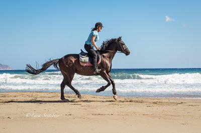 Zoraida - Riding Holiday